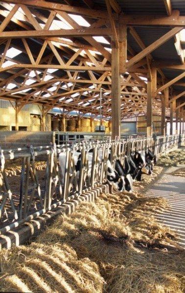 PhotoBâtiment agricole à Saint Michel de Feins
